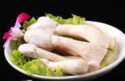 Bestandteil-Sushi kochten in Büchsen konservierten den Trommelstock-essbaren Pilz