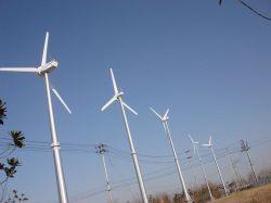 De petite et moyenne échelle génératrices éoliennes de la ferme éolienne Hummer 400W à 100kw éolienne