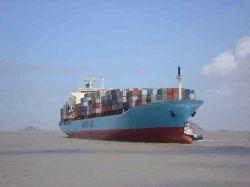 シンセンからの海のShippping国際的な安全なサービスかニンポーかアフリカへのHanghai中国
