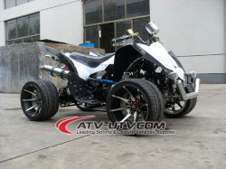 110cc ATV con Electric Inizio (AT0528-A)