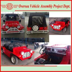 Convertible en topless Isla Minimoke Classic Cars
