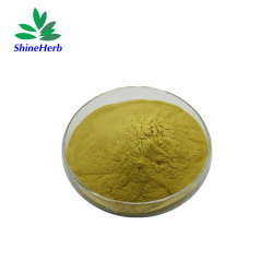 Soluble dans l'eau organique naturel extrait de graines de plantes de chardon de lait en poudre silybine Isosilybin 80 % 90 % de la silymarine HPLC