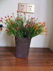 Природных морских водорослей корзину с ручками и других цветов в горшочках растений внутри корзины для хранения прачечная