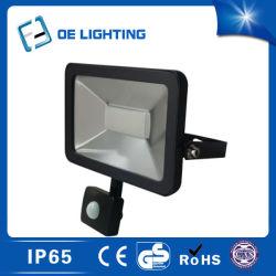 Venda quente 30W Projector LED com Sensor preço de fábrica