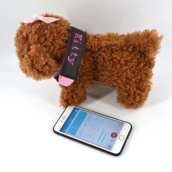 USB Linli imputables à l'extérieur jusqu'voyant clignotant lumineux de sécurité pour les chiens de la bande, les animaux de compagnie