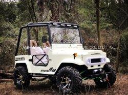 4مقاعد 2مقاعد مركبة على شكل ATV مع سيارة بنزين صغيرة مزودة بتصديق CE UTV 320 سم مكعب رباعي ATV