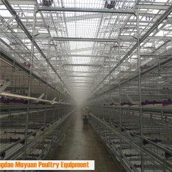 Kontrolleen-Geflügel-Halle-Bauernhof-Rahmen für Huhn-Schicht-Hennen