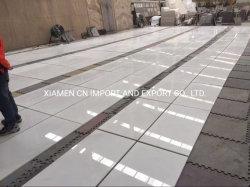 Pedra natural de Mármore/pisos de azulejos do piso/laje/cozinha/banheiro/parede/Step/chapeamento
