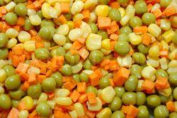 Konserven Gemischtes Gemüse Aus Frischer Ernte