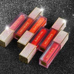 Steen die het Waterdichte Vloeibare Schoonheidsmiddel van de Make-up van de Schoonheid van de Lipgloss Lipgloss Bevochtigende duren