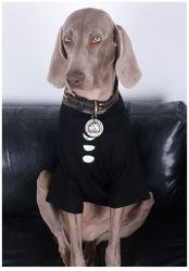 Venta caliente Personalizar Primavera Verano 100% algodón imprime gran perro ropa moda ropa Pet