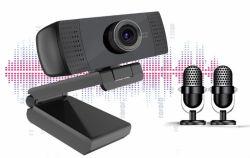 2020 기록 협의와 흐르기 부르는 영상을%s 두 배 Mic 입체 음향 1080P Webcam 사진기를 가진 새로운 디자인 USB 사진기