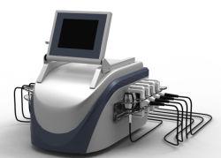 Uso doméstico profesional Salón de Belleza La forma del cuerpo máquina láser de diodo LED Cuerpo adelgaza forma SPA