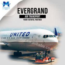 Luft-Logistik-Verschiffen von China nach Los Angeles/New York/Chicago/Dallas/Wahshington/Huston/Philadelphia/Boston/Atlanta/Seattle/Miami/Amerika/The USA