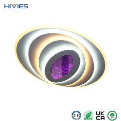 Hives 2021 الصينية المصنع بالجملة السعر الحديد الحديثة السقف ضوء غرفة معيشة أكريليك مستديرة مع سقف إضاءة على باب