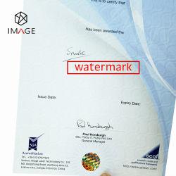 Contrassegno evidente di obbligazione dell'animale domestico dell'ologramma del compressore materiale di vuoto per i certificati