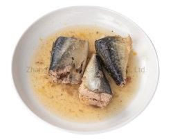 Eingemachte essbare Meerestiere eingemachte Makrele-Fische im Salzlösung-Export nach Sri Lanka 425g