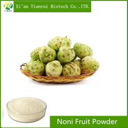 Suministro de la fábrica 100% puro de fruta de noni natural en polvo