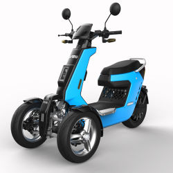V28 3000w دراجة بخارية سريعة كهربائية قابلة لإعادة الشحن ذات 3 عجلات مع EEC