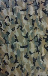 Polyester Camouflage Printed Woven Fabric (LS-A324)