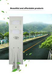 Tout en un seul feu de route LED solaire avec la lumière et l'heure automatiquement de contrôle
