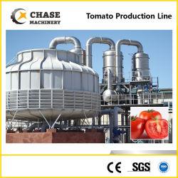 Automatique/Carottes Tomates/Pepper/jus d'Oignon/JAM/coller/Sauce/Ketchup sauce concentrée de production de traitement de la ligne Ligne de traitement coller rendant la ligne de remplissage