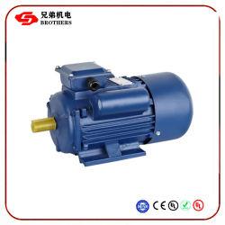 Motor de indução para Yc Série F classe IP55 Steel 800