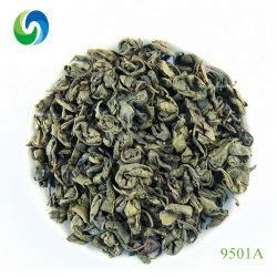 Tee-Dubai gewürzter Tee des China-gesunder grüner Tee-Schießpulver-9501