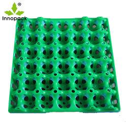 30 PE van holten het Plastiek Gerecycleerde Dienblad van het Ei