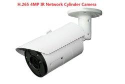 Fsan 4MP HD impermeable de infrarrojos de infrarrojos de la seguridad de red IP de vigilancia de la Cámara Bullet