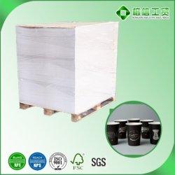 Papel revestido del PE para las tazas de papel disponibles y el rectángulo de papel