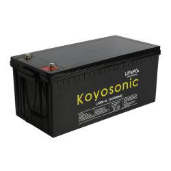 Batteria al litio 12V 24V 200ah LiFePO4 con BMS Per solare