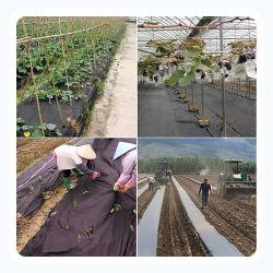 قماش مكافحة الأعشاب، قماش غير منسج، يغطي سطح الأرض الخدمة الشاقة حاجز الأعشاب المضادة للزراعة الزراعة حصيرة المناظر الطبيعية
