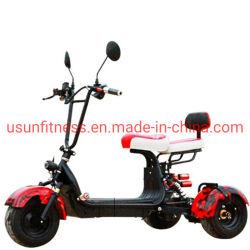 Elektrische ATV 3 fette Gummireifen-Geschäftemacher-Treibstoff-Energie, die Vierradantriebwagen ATV für Erwachsene und Kinder läuft