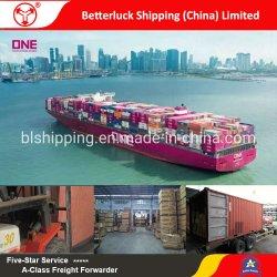 Бесплатная доставка грузов оператор Китая в Японию LCL укрепления службы