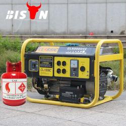 Le Bison 5kw 5000W 5kVA générateur électrique biogaz GPL portable