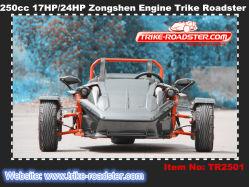 Nuevo estilo 250cc refrigerado por agua 3 Rueda Ztr Roadster Trike