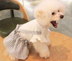 Van de Katoenen van de Zomer van de hond de Kleren van het Huisdier van de Toebehoren van de Kostuums Kleding van het Overhemd