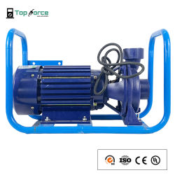 Elektrische dieselbrandstofpomp voor dieselmotor