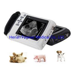 Vet/máquina de Ultrasonido Ultrasonido de bolsillo para Cat&Dog