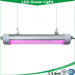 Китай оптовых распространителей 150W IP65 светодиодный индикатор расти, Tri доказательства лампы УФ лампой, мини-проектор