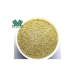 Polvere eccellente della proteina del cereale dell'alimentazione animale del pasto di germe di qualità 60%