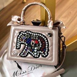 Silk Schal-Dame-Luxuxform-Tendenz handgemachte Acrylc$ein-schulter diagonale Dame Handbag