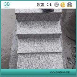 G655/Grey Graniet/Wit Graniet voor Betonmolen/Kerbstone/Kubus/Kei/Grenzen/de Bekledingen van de Muur/de Steen van de Tuin/Open haard/de Bovenkant van de Ijdelheid