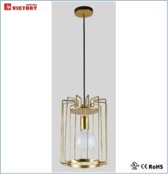De eenvoudige Decoratieve Nieuwe Lamp van de Tegenhanger van de Stijl Moderne Hangende voor Hotel