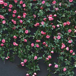 中国のホーム装飾のための絹の花180cmの人工的な花輪花