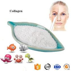 Tipo naturale & puro I di 100% dei pesci del collageno della polvere dalla Cina Hrk