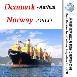"""Океан отправки в Орхусе (Дания) ; в Осло (Норвегия) -20""""/40"""" контейнер"""