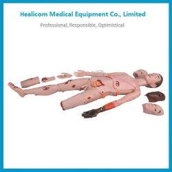H-G110 высокого качества травмы спины манекена