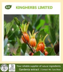 Gardenia-Auszug Geniposide 10%~98% HPLC